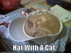 Hat With A Cat