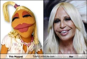 This Muppet TotallyLooksLike.com Her