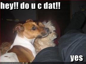 hey!! do u c dat!!  yes