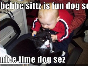 bebbe sittz is fun dog sez  nice time dog sez