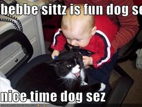 bebbe sittz is fun dog sez  nice time dog sez