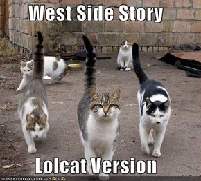 West Side Story  Lolcat Version