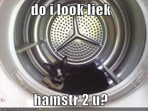 do i look liek  hamstr 2 u?