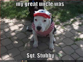 my great uncle was  Sgt. Stubby