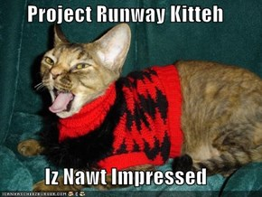 Project Runway Kitteh   Iz Nawt Impressed