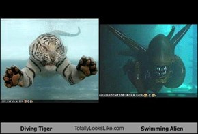 Diving Tiger TotallyLooksLike.com Swimming Alien