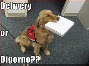 Delivery or Digorno??