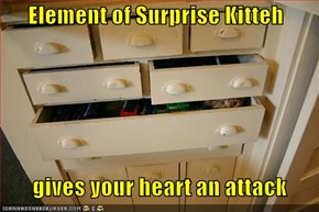 Element of Surprise Kitteh         gives your heart an attack