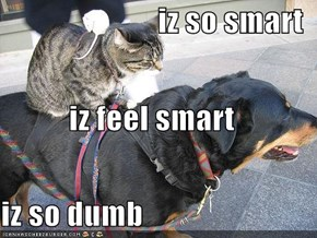 iz so smart iz feel smart iz so dumb
