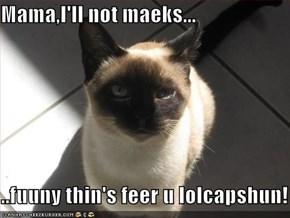 Mama,I'll not maeks...  ..fuuny thin's feer u lolcapshun!