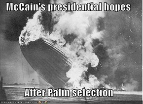 McCain's presidential hopes  After Palin selection