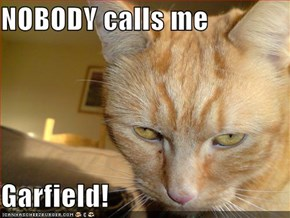 NOBODY calls me  Garfield!