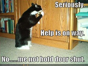 Seriously. Help is on way.  No......me not hold door shut.