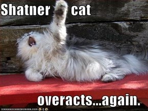 Shatner       cat  overacts...again.