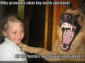 Why grandma what big teeth you have!   All the betterz to eat you wif my deer!