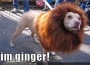 im ginger!