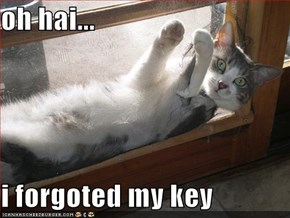 oh hai...  i forgoted my key