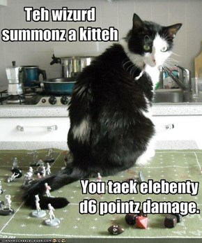 Teh wizurd summonz a kitteh