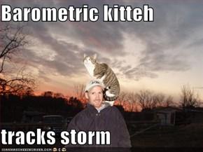 Barometric kitteh  tracks storm