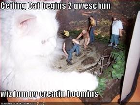 Ceiling Cat begins 2 qweschun  wizdum uv creatin hoomins