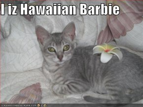 I iz Hawaiian Barbie