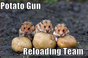 Potato Gun  Reloading Team