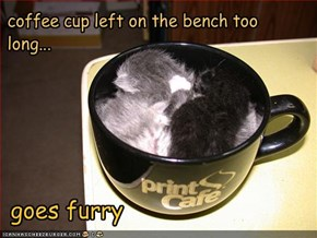 coffee cup left on the bench too long...