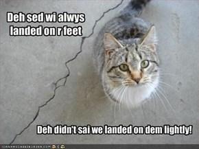 Deh sed wi alwys landed on r feet
