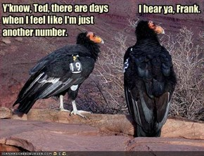 Y'know, Ted, there are days when I feel like I'm just another number.