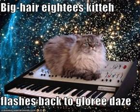 Big-hair eightees kitteh  flashes back to gloree daze
