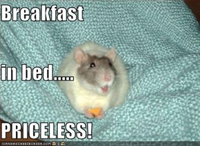 Breakfast  in bed..... PRICELESS!