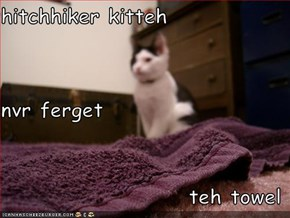 hitchhiker kitteh  nvr ferget teh towel
