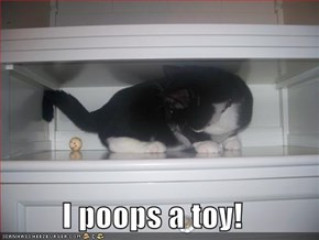 I poops a toy!