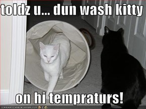 toldz u... dun wash kitty  on hi tempraturs!