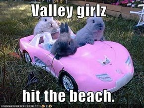Valley girlz  hit the beach.