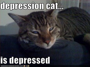 depression cat...  is depressed
