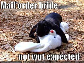 Mail order bride  not wut expected