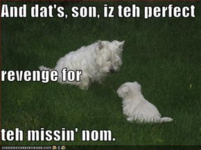 And dat's, son, iz teh perfect revenge for teh missin' nom.