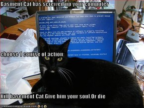 Basment Cat has screwed up your computer   choose 1 course of action: Kill basement Cat,Give him your soul,Or die