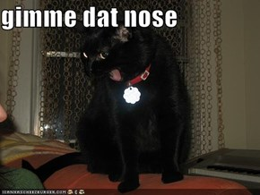 gimme dat nose