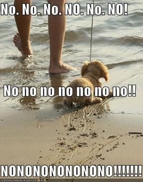 No. No. No. NO. No. NO!  No no no no no no no!! NONONONONONONO!!!!!!!
