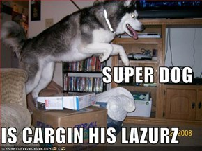 SUPER DOG IS CARGIN HIS LAZURZ