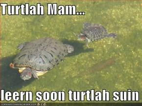 Turtlah Mam...  ..leern soon turtlah suin