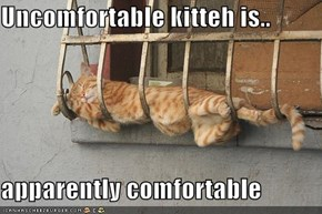 Uncomfortable kitteh is..  apparently comfortable