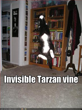 Invisible Tarzan vine
