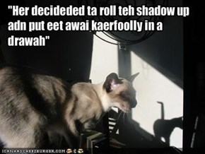 """Her decideded ta roll teh shadow up adn put eet awai kaerfoolly in a drawah"""