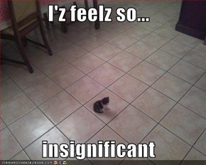 I'z feelz so...  insignificant