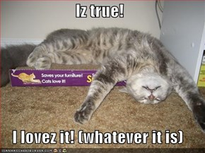 Iz true!  I lovez it! (whatever it is)