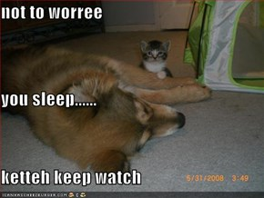 not to worree you sleep...... ketteh keep watch