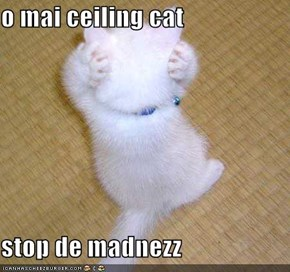 o mai ceiling cat   stop de madnezz